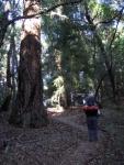 2005-09-17 Backpacking in Portola State Park.jpg